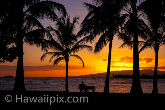 Magic Island Sunset